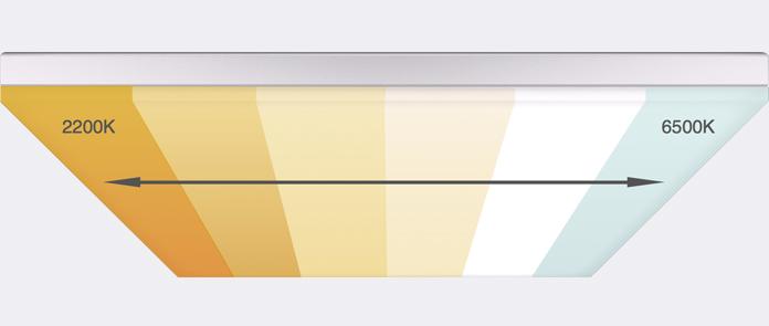 whites-panel
